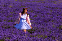 Tourist in Lavender Field, Snowshill, July 2017